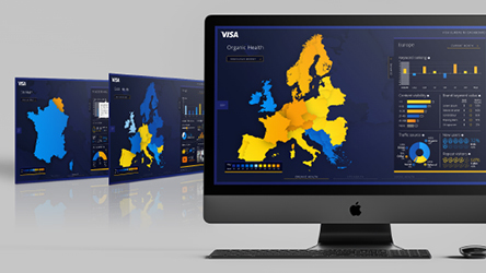 VISA DATA DASHBOARD
